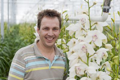 Frank van Wijk - New Orchids